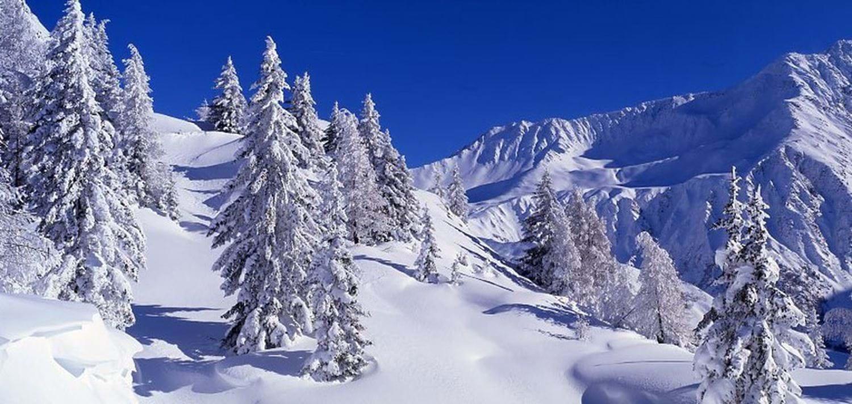 Luxury Ski Chalets Chamonix France Luxury Hotels